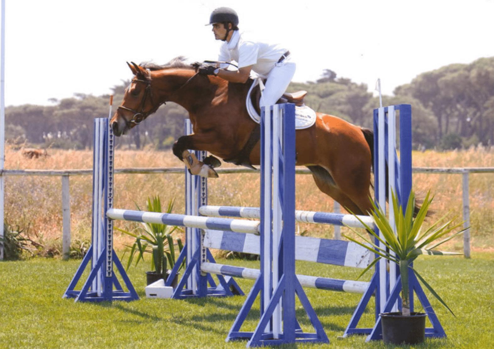 equitação em cascais5