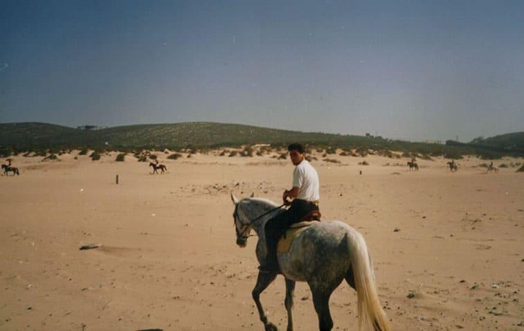 passeios cavalo guincho-1
