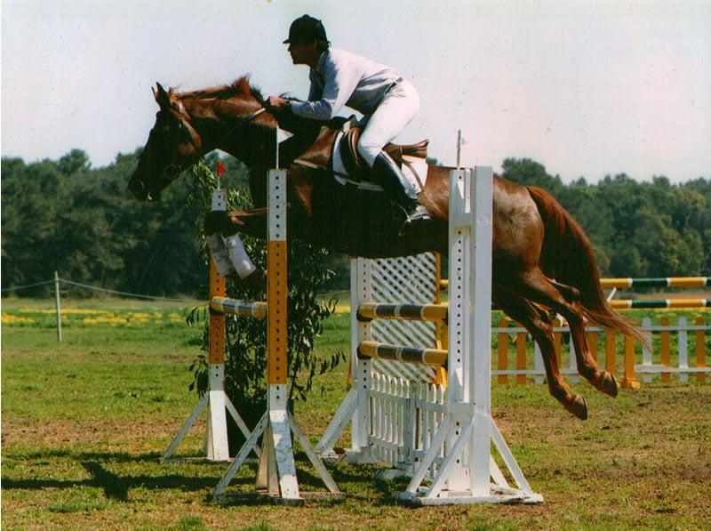 treino de competição equitação-3
