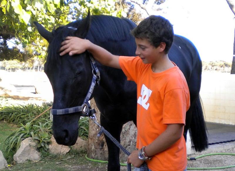 aulas-equitação-1